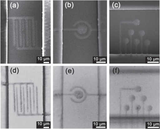 SEM images (a)–(c) and corresponding optical images (d)–(f) of three kinds of silver microelectrodes integrated with a microfluidic device. (a), (d) Interdigital electrode, (b), (e) two-electrode system, and (c), (f) MEA.