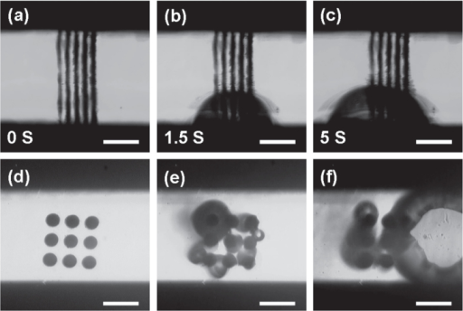 Silver microheater and catalytic microreactor fabricated by FsLDW-induced controllable assembly of Ag NPs. (a)–(c) Heating process of a microheater integrated within a microfluidic channel. A microbubble could be clearly observed, indicating the heating of the solvent. (d)–(f) Catalytic decomposition of H2O2 inside a silver microreactor. (e) Gas bubbles appeared as soon as H2O2 was injected into the channel; (f) 2 s later, the bubble grew bigger. The scale bar is 20 μm.