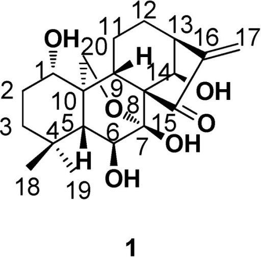 The structure and numbering of oridonin.