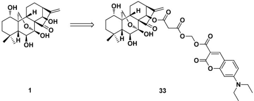 The oridonin fluorescent probe 33.