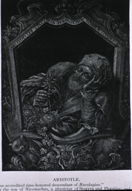 <p>Figure appears in a frame, resting elbow on its care and holding leaf.</p>