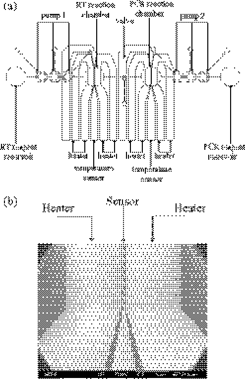 a  schematic diagram of two
