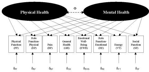 mental health act 2007 summary pdf