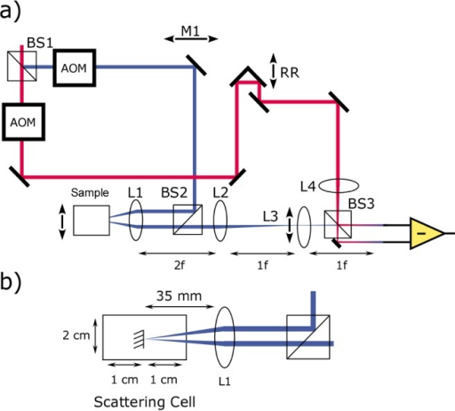 Schematic of the time domain MS/LCI system. a) 830 nm Ti:Saphire light is divided into sample (blue) and reference (red) arm paths. A pair of acousto-optic modulators (AOMs) frequency shift the sample and reference arms such that a 10MHz frequency offset exists between them. Mirror M1 adjusts the illumination angle onto the sample, while lens L3 (f = 100 mm) adjusts the collection angle. A retro-reflecting prism (RR) is used to perform depth scans, while B scans are performed by translating the entire sample enclosure. L1 (f = 35 mm) and L2 (f = 100 mm) form a 4f relay onto the center of L4 which can be translated to adjust the collection angle. b) Close up of the sample chamber. A 4 mm gold coated reflector is suspended in the middle of a 2x2 cm box filled with scattering media.