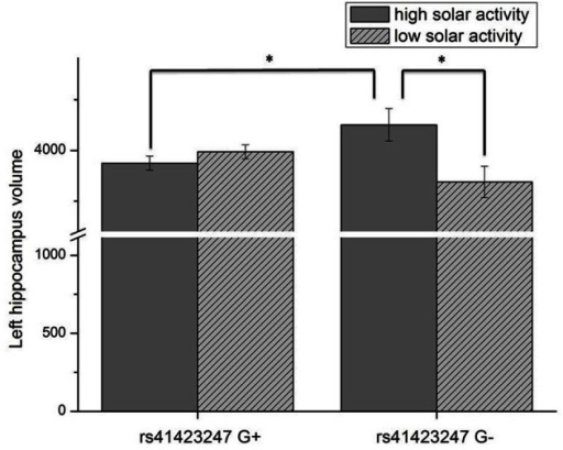 Interaction effect of rs41423247 (G±) by solar activity in the first trimester (high/low) on the left hippocampus volume (means and SEM are presented; *p < 0.05).