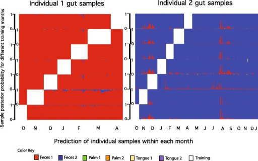 Prediction of both human host identity and body site according to maximum posterior probability. Samples were from the gut microbiomes of two individuals collected over 7 and 16 months (individuals 1 and 2, respectively) [1]. The white blocks within the plots are the months that were used to train the model. Every row corresponds to the results obtained from a different training month. The height for each row corresponds to the posterior probability scale of 0 to 1. The posterior probabilities for the palm and tongue samples from the same study can be found in Additional file 3.