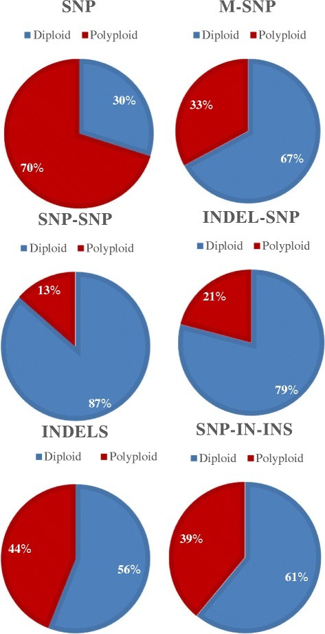 Proportion of diploid- and polyploid-clustering SNPs in the SNP categories designed from the octoploid GDP. Marker categories include di-allelic SNPs, multi-allelic SNPs (mSNPs), indels, and the three haploSNP categories of SNP-SNP, Indel-SNP, and SNP-in-Insertion.