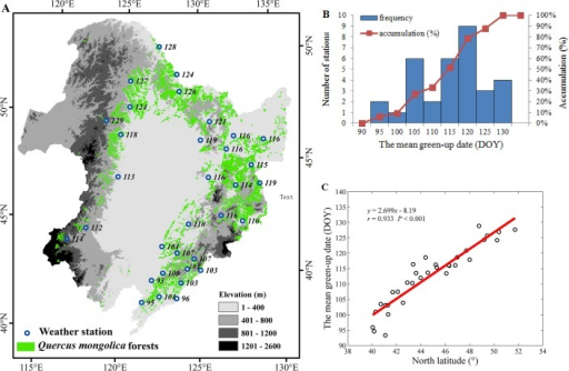 The temporal mean green-up dates (DOY) for Q. mongolica in Northeast China during 1962–2012.(A) The spatial distribution of mean green-up dates over 33 weather stations; (B) the frequency distribution of green-up dates; and (C) the relationship between the green-up date and latitude. Note: the numbers in (A) indicate the green-up dates (DOY) at each weather station.