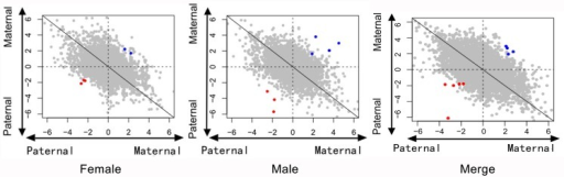 Ratio of reads aligned to parental genomes of all SNPs.Points in this figure reflect the ratio of reads aligned to the maternal versus the paternal genomes under the loose standard (SNP sequencing depth greater than 2×). The horizontal axis is log2 (m:f) in cross I, while the vertical axis is log2 (m:f) in cross II. Red points indicate the candidate maternal imprinted SNPs, while the blue points indicate candidate paternal imprinted SNPs.