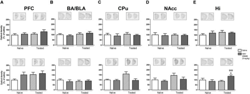 Effects of saline and WAY208466 (9 mg/kg, ip) on the levels of c-fos mRNA after PA test for STM (upper) or LTM (lower) for (A) PFC, pre frontal cortex; (B) BA/BLA, lateral and basolateral amygdala; (C) CPu, caudate putamen; (D) NAcc, nucleus accumbens; (E) Hi, hippocampus.∗p < 0.05 compared to saline/naïve group. ¤p < 0.05; ¤¤p < 0.01 compared to saline group. Mean ± SEM; n = 6–8 mice per group.
