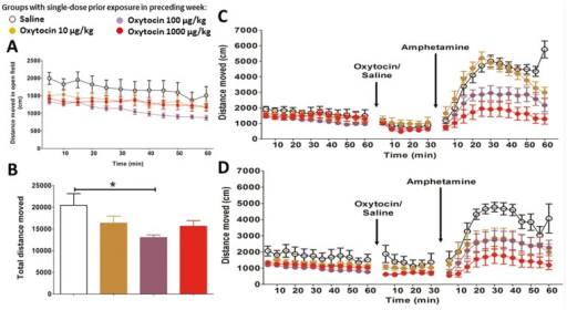 Open field and amphetamine test.(A) Distances moved in each 5-min time bin at baseline. (B) Total distance moved in 1 hour at baseline. Previous exposure to oxytocin lowered baseline activity in both sexes. (C) 100 μg/kg and 1000 μg/kg doses of oxytocin significantly suppressed amphetamine activity in females. (D) 1000μg/kg Oxytocin exposure significantly suppressed amphetamine activity in males. Error bars refer to ± SEM. *post-hoc testing: p<0.05.