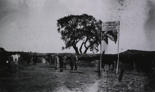 <p>Personnel and horses near the entrance to a veterinary lazaret.</p>