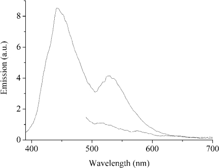 Signal amplification is offered by PF amplification, which is demonstrated by the comparison between the FRET signal sensitized by PF excitation and the signal generated from direct excitation of the fluorescein-tagged ssDNA signaling probe. Upper curve: the excitation wavelength was 380 nm, which excited PF (2.7 × 10−8 M). In the presence of fluorescein-tagged ssDNA probe (1 × 10−10 M), the energy was efficiently transferred from PF to the proximal fluorescein via FRET. Lower curve: the excitation wavelength was 480 nm, which directly excited the fluorescein of the ssDNA probe (1 × 10−10 M). Note that the emission of fluorescein at 520 nm was much more intense in the case of PF amplification than in the case of direct excitation.