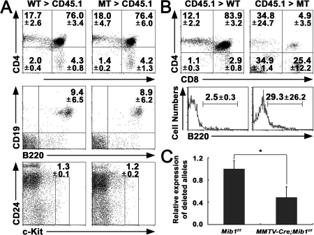 Regulation of T cell development by Mib1 in the thymic microenvironment. (A) The lethally irradiated CD45.1 mice were injected intravenously with BM cells from the 12–15-wk-old MMTV-Cre;Mib1+/f and MMTV-Cre;Mib1f/f mice. At 12 wk after transplantation, the thymocytes were analyzed by flow cytometry for the expression of CD4 and CD8 gated on the CD45.2+ populations (top), CD19 and B220 gated on the CD4−CD8− DN thymocytes (middle), and CD24 and c-kit gated on CD4−CD8−CD25−CD44+ cells (bottom). Numbers indicate mean ± SD from four independent experiments. (B) The lethally irradiated MMTV-Cre;Mib1+/f and MMTV-Cre;Mib1f/f mice were transplanted with CD45.1 BM cells. At 5–6 wk after reconstitution with CD45.1 BM cells, the thymocytes were stained for CD4 and CD8 (top) and B220 gated on the CD4−CD8− DN thymocytes (bottom). Numbers indicate mean ± SD from three independent experiments. (C) Genomic DNA was prepared from the CD45− cells sorted from thymi. Quantitative real-time PCR was performed to analyze the Mib1 deletion using deleted allele-specific primers. Expression of nondeleted allele served as a control for relative quantification. Data are mean ± SD from triplicate experiments. *, P < 0.01.