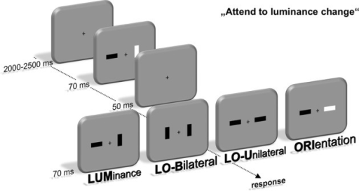 Experimental setup. Participants were instructed to localize a change of luminance within a fast sequence of two stimulus displays containing two lateralized bars. These luminance changes either occurred alone (LUM) or simultaneous with an orientation change of the same (LOU) or contralateral bar (LOB). Additionally, only the orientation of one bar changed in one out of four trials (ORI). Localization was accomplished by a button press at the side of the luminance change using the index finger.