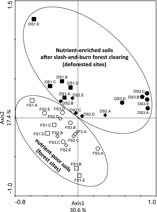 Principal component analysis plot based on the structure of soil verrucomicrobial communities as determined by T-RFLP analysis in nutrient-enriched soils after slash-and-burn forest clearing and natural nutrient-poor soils in an adjacent primary forest in three discontinuous areas after forest clearing and burning. Symbols refer to individual replicates (A, B, C, D and E) of the following sampling sites: open squares forest site located at Area 1 (FS1), open diamonds forest site located at Area 2 (FS2), open circle forest site located at Area 3 (FS3), black squares deforested site located at Area 1 (DS1), black diamonds deforested site located at Area 2 (DS2), black circle deforested site located at Area 3 (DS3)