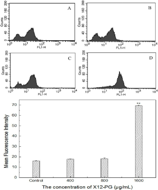CRT exposure detected by flow cytometry after treatment of X12-PG. Prior to analysis, cells were respectively treated with 0, 400, 800, 1600 μg/mL (A–D) X12-PG for 48 h, then harvested and labeled with FITC. The concentration of CRT on cell membrane was expressed as mean fluorescence intensity (MFI) which has excluded background (Isotype-matched IgG was used as a control: Data not shown). (Error bars are mean ± SD, **p < 0.01 versus control)