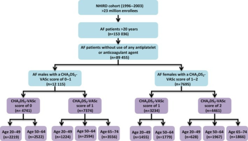 A flowchart of the enrollment of the study cohort. Among 89 455 AF patients who did not receive oral anticoagulants or antiplatelet agents, there were 12 115 male AF patients with a CHA2DS2‐VASc score of 0 to 1 and 7695 female AF patients with a CHA2DS2‐VASc score of 1 to 2. The risk of ischemic stroke was analyzed for these patients and further stratified on the basis of age. AF indicates atrial fibrillation; NHIRD, National Health Insurance Research Database.