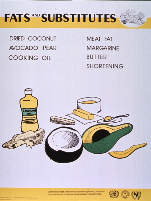 <p>Predominantly white poster with black lettering and yellow highlights.  Title at top of poster along with a line drawing of several different foods.  Specific fats listed below title.  Dominant visual image is a color illustration of many kinds of fats including cooking oil, avocado, butter, etc.  Publisher and sponsor information at bottom of poster.</p>