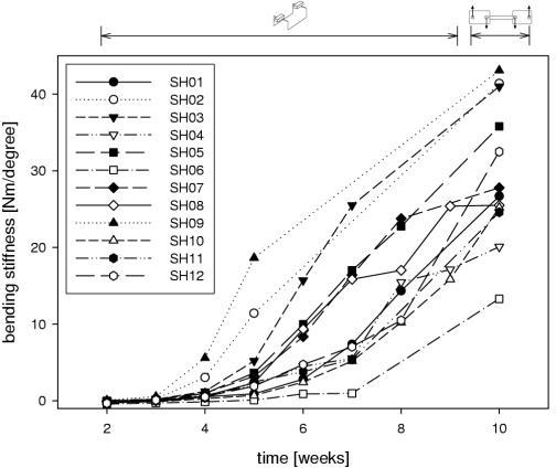 Sequential stiffness measurement. Increase of callus bending stiffness versus healing time of all sheep. From the third week on, fracture stiffness is obviously increasing. All stiffness values at ten weeks were obtained from four-point-bending tests in a material testing machine. Note that the curves of the in-vivo-measurements closely correspond to the more accurate ex vivo measurements obtained from the 4-point-bending test. In those sheep where progressive pin loosening was evident, the data points were omitted.