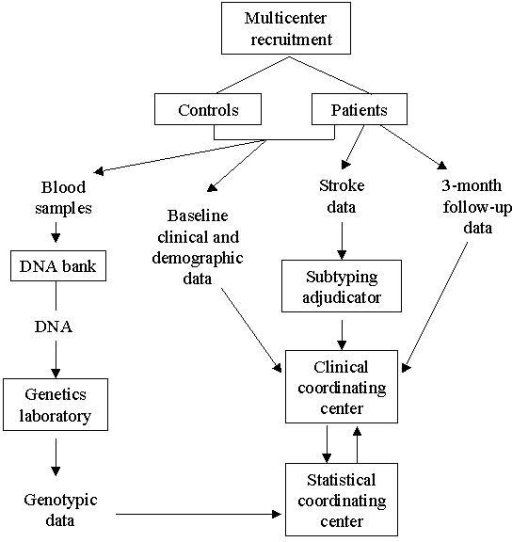 Overview of flow of samples and data from study subjects to genetic analyses.