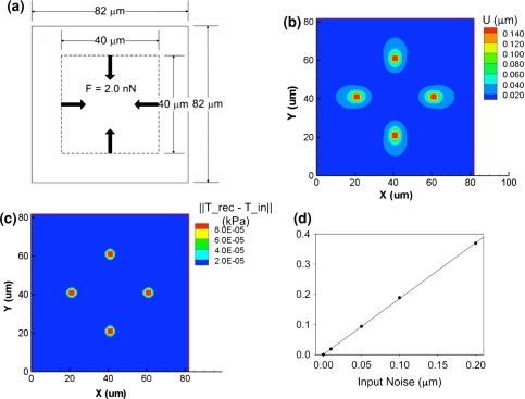 Simulation of traction force recovery and introduction of displacement noises. (a) Four balanced forces for the generation of displacement fields. (b) Calculated displacement field from the traction fields. (c) Contour plot of traction difference (//T(recovered) − T(input)//). (d) Effects of the introduced Gaussian noises of 0, 0.01, 0.05, 0.1, and 0.2 μm on the RMS of traction force error (ΔT = //T(with noise) − T(without noise)//). The R2 value was 0.999. U = magnitude of displacement, and T = magnitude of traction