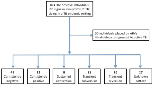Schematic representation of study results.163 chronically HIV infected (ARV naïve) individuals (CD4 = 5–1142 cells/ul) were recruited in Durban, South Africa. An RD1-Elispot was performed on PBMC every 3 months for a period of 3–21 months. During the period of follow-up 30 individuals were placed on ARVs and 4 individuals progressed to active TB. Of the 129 individuals who were not placed on ARVs or TB treatment during follow-up, 5 categories of Elispot kinetics were observed: 45 (35%) individuals were consistently negative at each time-point tested, 22 (17%) individuals were consistently positive at each time-point tested, 8 (6%) individuals displayed sustained conversions (three or more positive Elispots after at least one negative Elispot), 11 (9%) individuals displayed transient conversions (one or two positive Elispots between negative plates), and 16 (12%) individuals displayed transient reversions (one or two negative Elispots between positive plates). For 27 (21%) individuals the category is unknown due to either a lack of interpretable results (e.g. SK 179 had indeterminate Elispots at all 3 time points tested), or the absence of either pre-baseline samples or further follow-up to determine if observed reversions and conversions are transient or sustained.