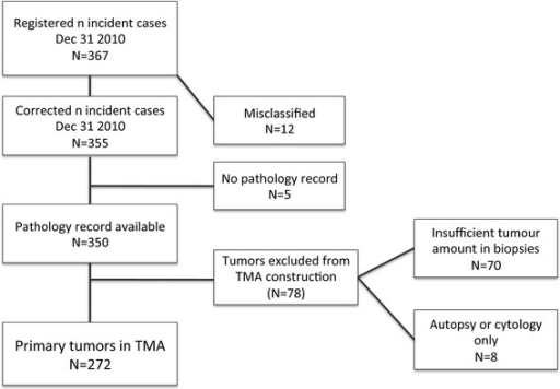 Flowchart of urothelial cancers in the Malmö Diet and Cancer cohort. A flowchart outlining the study cohort from a total number of 367 registered incident cases up until December 31st 2010.