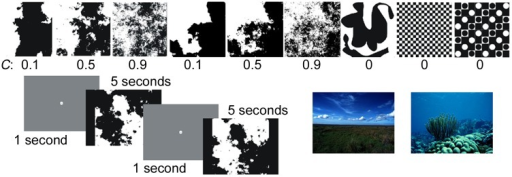 Examples of different fractal image stimuli which vary in spatial complexity from low (C = 0.1) to high (C = 0.9), along with examples of non-fractal images used (C = 0).Also shown in the lower left is the image viewing protocol, where participants focus on the screen center for one second between images. The lower right has two examples of natural landscape images used.