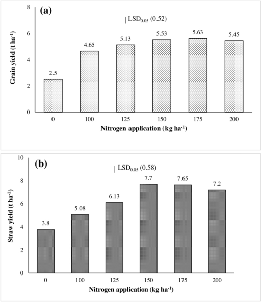 Grain (a) and straw (b) yields of CSR43 as influenced by N treatments in an on-station trial conducted during 2013 wet season at ICAR-CSSRI research farm, Lucknow, UP, India.