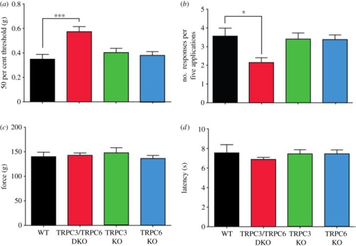 Selective deficits in innocuous mechanosensation in TRPC3/TRPC6 double knock-out (DKO) mice. (a) Fifty per cent threshold to mechanical stimulation using von Frey hairs in wild-type (WT) (n = 8), TRPC3/TRPC6 DKO (n = 9), TRPC3 knock-out (KO) (n = 7) and TRPC6 KO (n = 10) mice. (b) Responses of WT, TRPC3/TRPC6 DKO, TRPC3 KO and TRPC6 KO mice to a cotton bud applied to the plantar surface of the hind paw (n = 6/group). (c) Response to noxious mechanical stimulation using a Randall–Selitto apparatus in WT (n = 7), TRPC3/TRPC6 DKO (n = 9), TRPC3 KO (n = 6) and TRPC6 KO (n = 7) mice. (d) Response to noxious thermal stimulation using Hargreaves' apparatus in TRPC3/TRPC6 DKO (n = 14), TRPC3 KO (n = 11), TRPC6 KO (n = 15) and WT (n = 12) mice. Data are expressed as mean ± s.e.m. *p < 0.05; **p < 0.01; ***p < 0.001. See also electronic supplementary material, figure S2.