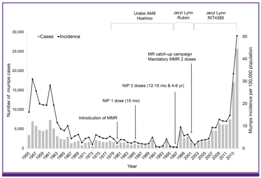 Number of reported mumps cases and the annual incidence of mumps in Korea since 1955, and the mumps vaccine strains used in Korea.MMR, measles-mumps-rubella; MR, measles-rubella; NIP, National Immunization Program; mo, months; yr, years.
