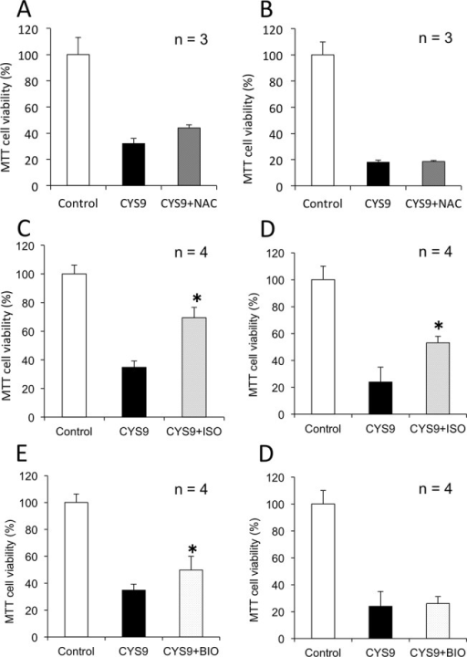 CYS9-induced cytotoxicity in HL-60 cells with candidate cardioprotectant agents.Cell viability was assessed by MTT assay after HL-60 cells were exposed to CYS9 with and without NAC or ISO or BIO: results show cell viability (mean + SD from 3 or 4 independent experiments) after exposure to CYS9 for 24 hours (A, C, E) or 48 hours (B, D, F). *p < 0.05 compared with CYS9 group.