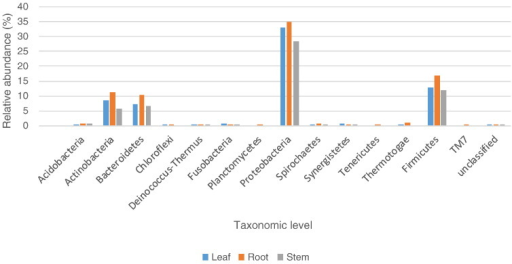 Bacterial taxonomic composition histogram. The average composition of bacteria communities obtained from surface sterilized tissues of A. vera using culture-independent method (MiSeq Illumina platform) was analysed and compared. The nomenclatures of the phylotypes are based on the SILVA rRNA database (http://www.mothur.org/wiki/Silva_reference_files).