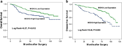Survival analysis of primary CRC patients (n = 342). Kaplan-Meier estimates of the DFS (a) and OS (b) according to MEK5 expression in 342 patients. The DFS and OS were significantly lower in patients with MEK5-high expression when compared with patients who had low MEK5 expression. P values were calculated using the log-rank test