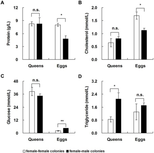 Differences in the content of four nutrients between unfertilized eggs/unmated queens and fertilized eggs/mated queens. Data represented as mean±s.e.m. Asterisks denote significant differences by paired t-test; n=4; n.s. not significant; *P<0.05; **P<0.01.