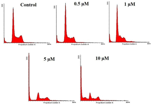 HCT116 cells were treated with different doses of API (0.5, 1, 5, and 10 μM) for 48 h, harvested and stained with propidium iodide and subjected to flow cytometry.Histogram obtained indicated the accumulation cells in sub-G1 phase.