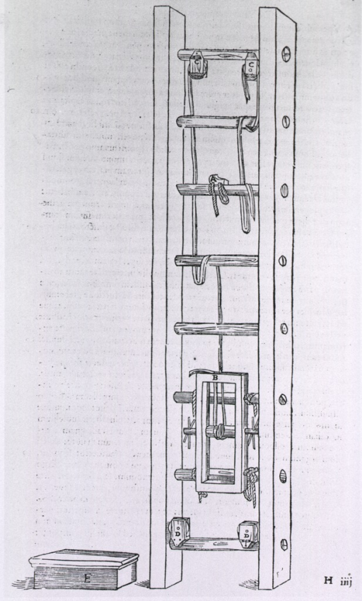 <p>A traction ladder.</p>