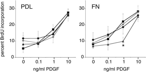 Progenitors require Lyn, but not Fyn or Src, for PDGF-mediated proliferation on the αVβ3 ligand. Oligodendrocyte progenitors exposed to 0, 0.1, 1, or 10 ng/ml PDGF for 24 h were evaluated for the percentage of cells that incorporated BrdU. Profiles of control (black squares), Fyn-depleted (gray diamonds), Lyn-depleted (gray triangles), and Src-depleted (gray circles) cells are shown. On poly-d-lysine (PDL), all progenitors showed a similar dose-dependent increase in BrdU incorporation. In contrast, Lyn-depleted progenitors grown on the αVβ3 ligand fibronectin (FN) showed reduced BrdU incorporation (*, P < 0.05). Error bars represent SD.