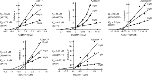 Lineweaver–Burk plot analyses of the inhibitory effects of AZTTP, AZddGTP, AZddSGTP, AZddATP and AZddAATP. Relative reaction velocity (relative V) was calculated relative to the highest activity without inhibition, which was taken as 1.