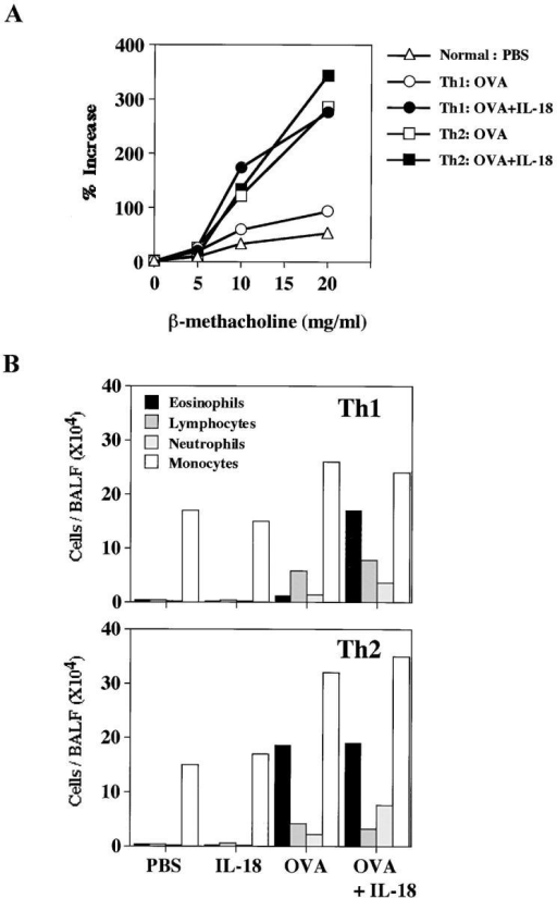 IL-18 induced AHR and eosinophilia in mice receiving memory Th1 cells. (A) AHR in response to increased concentrations of inhaled β-Mch was measured in a whole body plethysmograph. (B) Inflammatory cell composition of BALF from mice transferred with OVA-specific Th1 or Th2 cells and daily treated with intranasal administration of PBS or OVA and/or IL-18 consecutively for 3 d. Cell differential percentages were determined by light microscopic evaluation of cytospin preparation. Data are expressed as absolute numbers of cells. Representative results of five animals are shown.