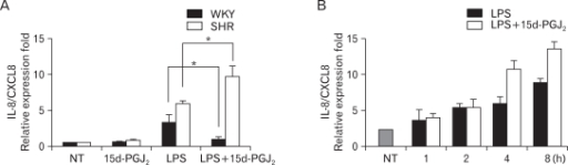 Effect of 15d-PGJ2 on the expression of LPS-induced IL-8/CXCL8 mRNA in VSMCs from SHR and WKY, and the time course of 15d-PGJ2/LPS-induced IL-8/CXCL8 mRNA expression in SHR VSMCs. (A) VSMCs were untreated (NT) or treated with LPS (1 µg/ml) or/and 15d-PGJ2 (10 µM) for 4 h, and the total RNA was analyzed by real-time PCR. Bars represent means±SD from three independent experiments. *p<0.05 vs. VSMCs treated with LPS alone. (B) SHR VSMCs were untreated (NT) or treated with LPS (1 µg/ml) or LPS plus 15d-PGJ2 (10 µM) simultaneously (15d-PGJ2/LPS) for the indicated times and the total RNA was analyzed by real-time PCR. Bars represent means±SD from three independent experiments.
