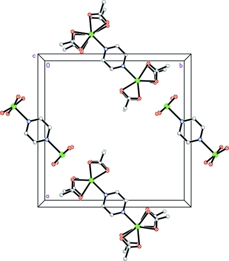The crystal packing of the title compound, viewed along the c axis, showing a layer of the cations and anions.