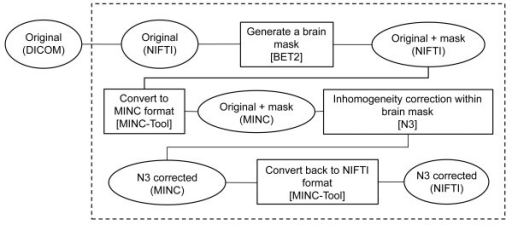 Schematic of inhomogeneity correction procedure performed on Lin4Neuro. Input images in the DICOM format were sequentially processed by MRIConvert, BET2, MINC-Tool, N3, and MINC-Tool to generate inhomogeneity-corrected images in NIFTI-1 format. Procedures within the dashed box were automated with a short shell script in Lin4Neuro. Open circles indicate formats. Open squares indicate software used for the procedures.