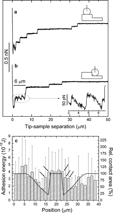 Force–distance curves of an L929 fibroblast at different positions on the microstructured substrate. The data originate from the same cell used in Fig. 5. The contact time was 10 s, the contact force was 250 pN, and the retraction speed was 5 μm/s. a Curve measured on top with primarily horizontal contact area. b Curve measured near the flanks with maximal vertical contact area. A long plateau with sawtooth shape was frequently observed for this position. Inset Magnification of the plateau. c Local adhesion energy (area under the force–distance curve) for different positions on the grooved microstructure. The groove is located in the center of the diagram (see Fig. 5b for the profile). The hatched bars show the local adhesion energy (mean ± SD, left scale); the solid line represents the calculated local contact area (right scale). The arrows denote the positions near the groove flanks where a high adhesion energy but a low adhesion force was found