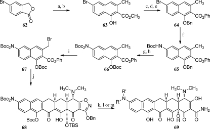 Synthesis of 9-Amino Pentacycline AnalogsReagents: (a) LDA, then methyl crotonate, THF; (b) BF3–Et2O, CH2Cl2; (c) BnBr, K2CO3, acetone; (d) NaOH, H2O, EtOH; (e) (COCl)2, DMF, CH2Cl2, then PhOH, DMAP, pyridine, CH2Cl2; (f) BocNH2, Pd2(dba)3, P(t-Bu)3, Cs2CO3, toluene; (g) H2, Pd–C, EtOAc, CH3OH; (h) (Boc)2O, DMAP, CH2Cl2; (i) NBS, BPO, CCl4; (j) enone 8, n-BuLi, THF; (k) aq HF, CH3CN; (l) H2, Pd–C, HCl, CH3OH; (m) aldehyde, H2, Pd–C, HCl, CH3OH.
