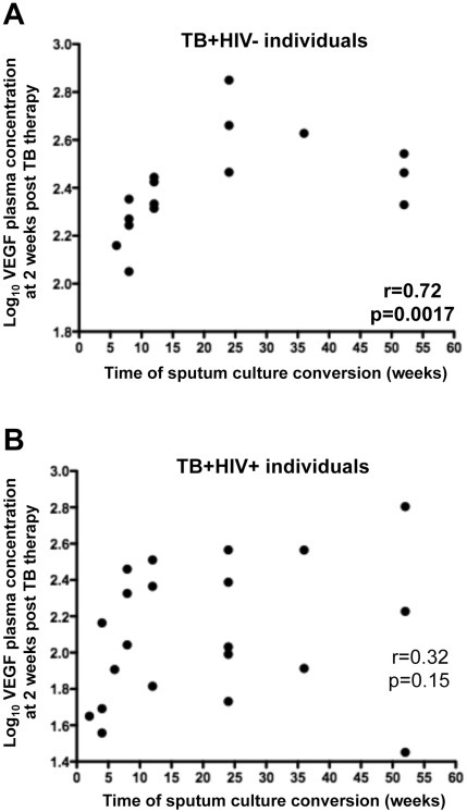 Correlation between plasma VEGF concentrations at 2 weeks post TB therapy initiation and time to sputum culture conversion.(A) TB+HIV− individuals; (B) TB+HIV+ individuals. VEGF concentration values were log-transformed. Statistical associations were performed by a two-tailed non-parametric Spearman rank correlation.