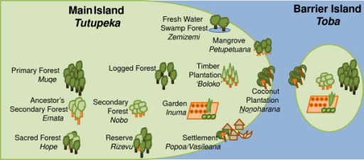 Forest and land use classifications in the local Roviana language.
