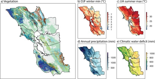 San Francisco Bay Area vegetation and climate.Maps of vegetation types, and the four climatic variables used as predictors for modeling the distribution of vegetation (maps of other predictors are shown in S1 Fig). A) Vegetation (see legend at top of Fig 3); gray areas on the map are urban and agricultural, or rare vegetation types not included in model. B-E) Climate variables, showing 1951–1980 historic norms. DJF = December, January, February. JJA = June, July, August. Borders delineate ten counties of San Francisco Bay Area.