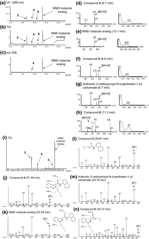 LC–MS and GC–MS analyses of product D. The LC–UV-PDA chromatogram (a), TIC (b) and an extracted-ion chromatogram at m/z 358 (c) are shown, along with the ESI mass and UV spectra of peaks 4 (d), 5 (f), 6 (h), the authentic NNEI indazole analog (e) and the authentic 2-methylpropyl N-(naphthalen-1-yl) carbamate (g). TIC (i) and EI mass spectra of peaks 4 (j), 5 (l), 6 (n), the authentic NNEI indazole analog (k) and the authentic 2-methylpropyl N-(naphthalen-1-yl) carbamate (m) obtained by the GC–MS analysis are also indicated